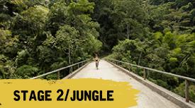 stage 2 - jungle