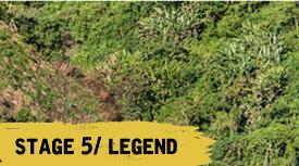 stage 5 legend